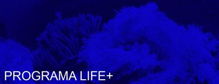 Programa LIFE+
