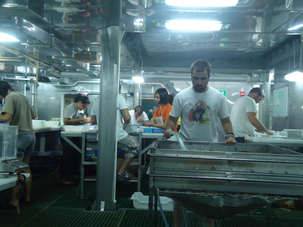 Científicos clasificando las muestras obtenidas y triando la próxima caja de muestras. Campaña Agosto - Septiembre 2011 Canal de Menorca © IEO