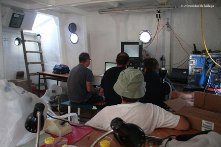 Todos atentos a las pantallas del ROV. Foto: Agustín Barrajón.