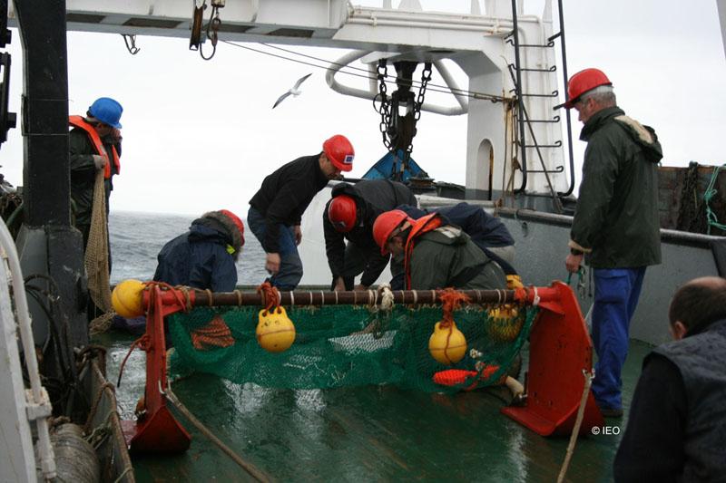 Revisión del beam trawl ©IEO
