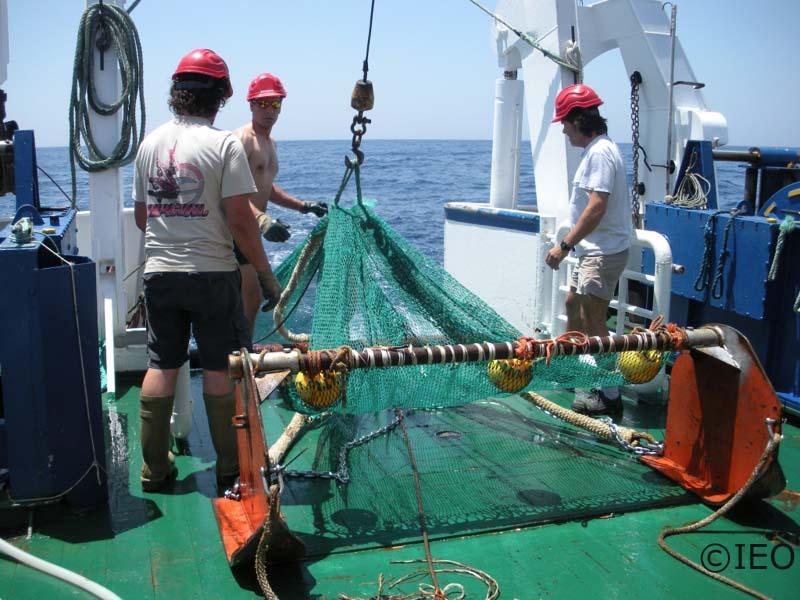 Operación en la cubierta de popa para realizar el arriado del beam trawl. La tripulación realiza las maniobras necesarias para dejarlo todo presto para el muestreo científico ©IEO