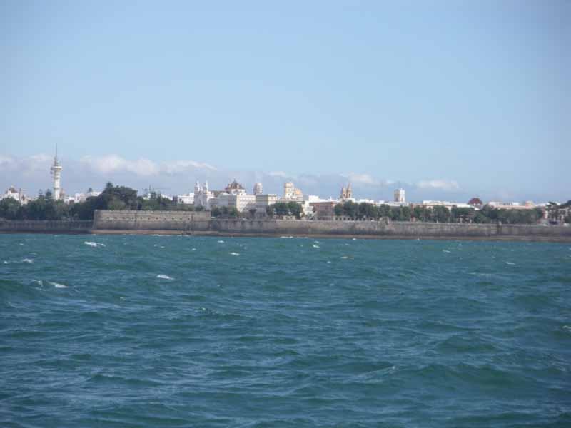 La arboleda de la Alameda Apodaca amarada por las imponentes murallas de Cádiz. La fortificación, rematada con el Castillo de la Candelaria, se debe al periodo de Carlos III ©IEO