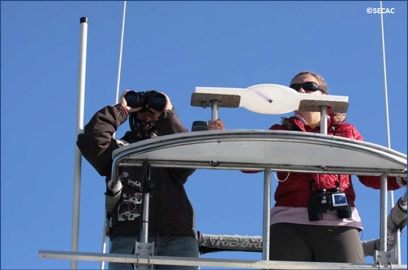 Juliana Castrillón de la SECAC y la voluntaria italiana Elena Papale en su turno de observación ©SECAC