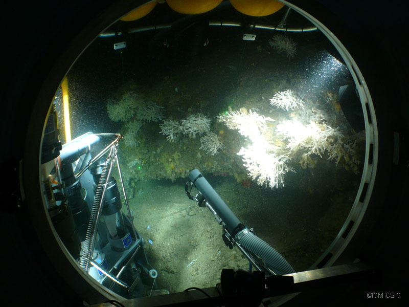 Recogida de muestras en las profundidades del cañón ©ICM-CSIC