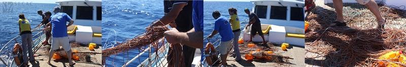 Recogida de un palangre a la deriva ©SECAC