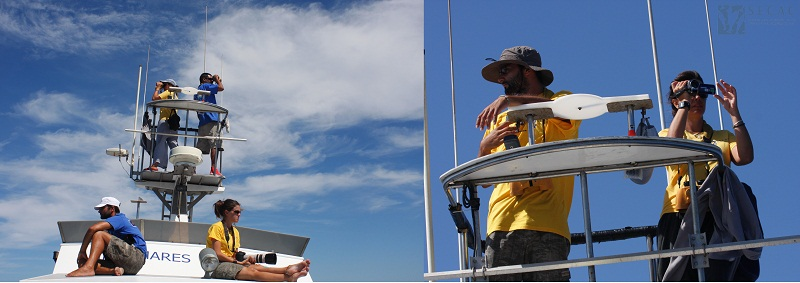 Observación desde la torre y el fly ©SECAC
