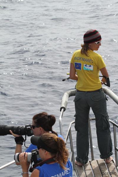 Marisa Tejedor, responsable de la campaña, con la ballesta intentando obtener una biopsia. Leire Ruiz y Mercedes Reyes, parte del equipo técnico tomando imágenes de diferentes especies ©SECAC