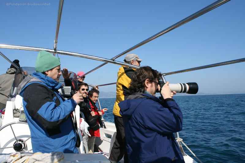 Diferentes socios observando aves marinas en la salida práctica del taller ©Fundación Biodiversidad