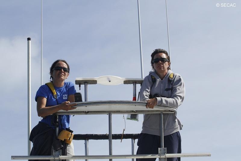 Avistadores en la torre de observación ©SECAC