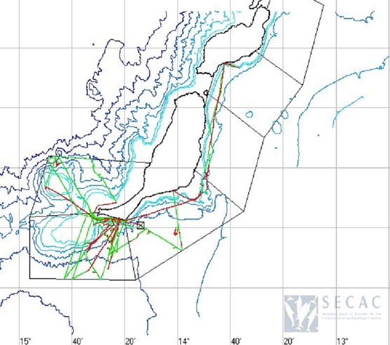 Mapa de los transectos realizados ©SECAC