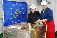 Clasificación de las muestras obtenidas con draga de roca ©IEO