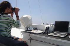 Realizando avistamientos desde el Riscos de Famara / Undertaking whale watching from the Riscos de Famara ©ALNITAK