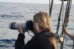 Tomando imagenes para su futura fotoidentificación / Taking pictures for the photoidentification ©CIRCE/ALNITAK