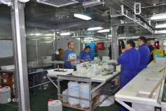 Duelo entre esponjas y máquinas: Javier Cristobo y Pilar Ríos dialogan con el personal de máquinas © IEO