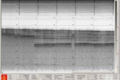 Captura de pantalla de la sonda paramétrica. Los niveles de sedimentación gasificada son claramente visibles en la parte izquierda del registro ©IEO