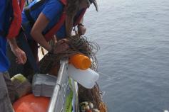 Instantáneas del palangre recogido y la tortuga atrapada ©SECAC