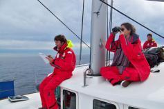 Realizando avistamientos y tomando datos / Undertaking watching and taking notes ©CEMMA