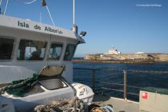 """El """"Isla de Alborán"""" en las inmediaciones de la isla del mismo nombre. Foto: Agustín Barrajón"""