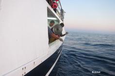 La tripulación de Hilario Paredes observa la suelta de la tortuga marcada © Alnitak