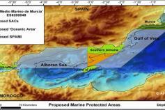 s de LIC (Red NATURA 2000 - Directiva Hábitat) y ZEPIM (Convenio de Barcelona) presentado por Alnitak a raiz del Pro