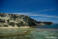 Isla de Alborán. Juan Bécares SEO/BirdLife
