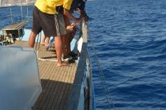 Kirme Bermúdez e Isaac Pérez retiran de un palangre a la deriva ©SECAC