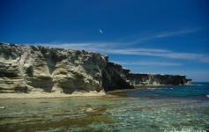 Isla de Alborán / Alborán island ©Juan Becares/SEO BirdLife